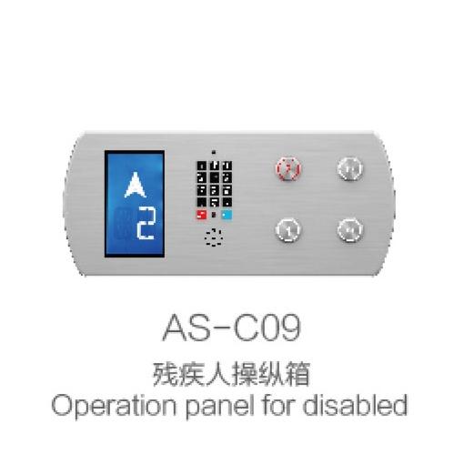 AS-C09 handicapped control box